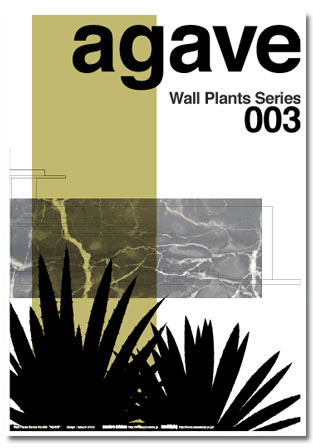 wall plants 3 agave